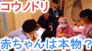 【コウノドリ】赤ちゃんは本物?未熟児はエキストラ?撮影方法がすごい