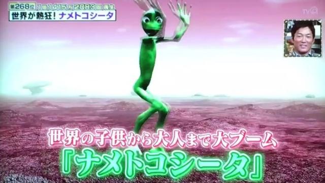 【動画】ナメトコシータの意味は?インスタで緑のやつのダンスの原曲は?